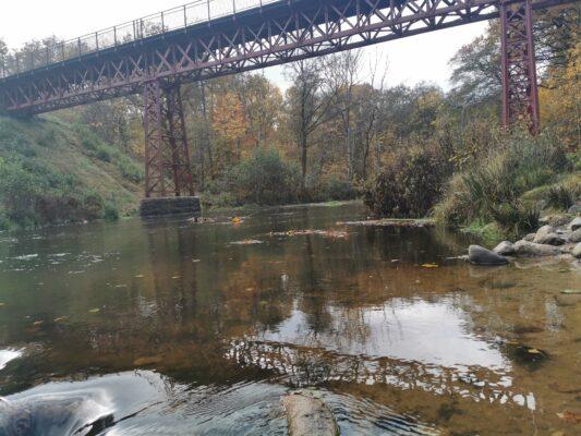 Den genfundne bro