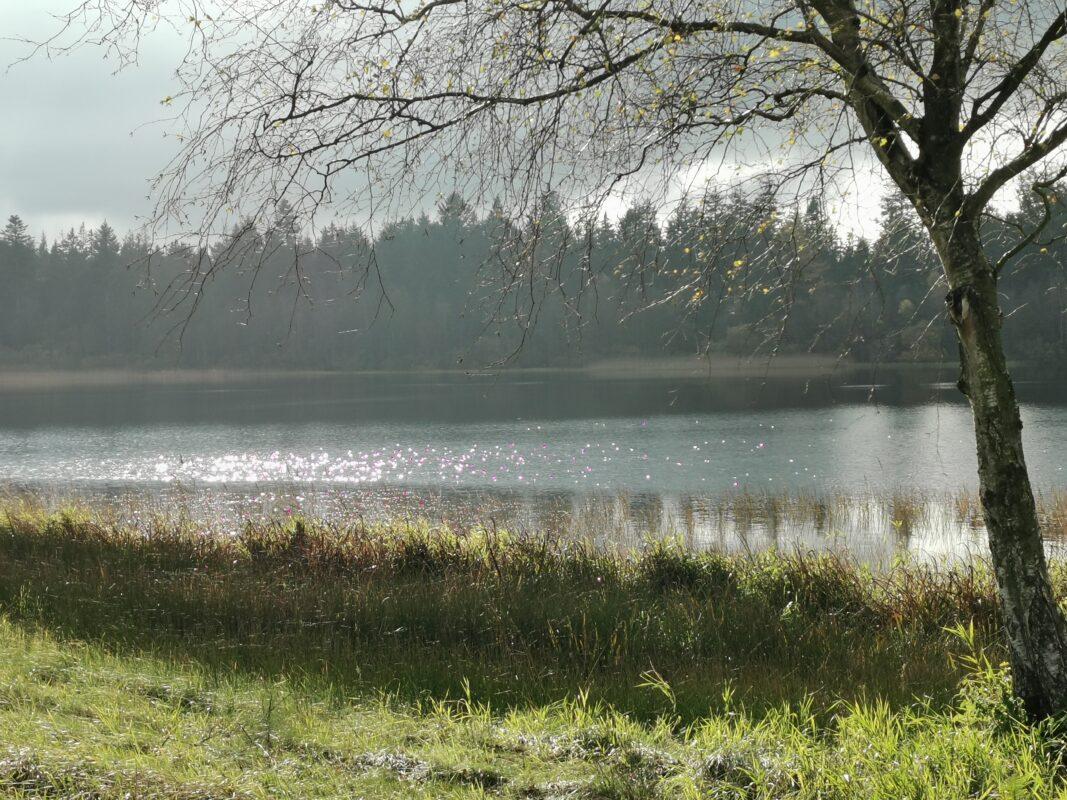 Hampen sø