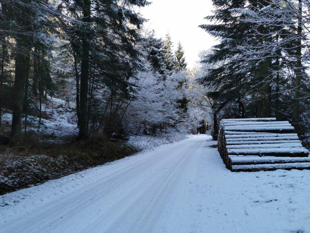 Vinter i bakkelandet